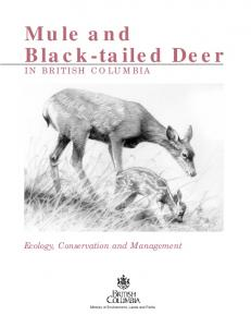 Mule/tailed deer for PDF.695U - Ministry of Environment