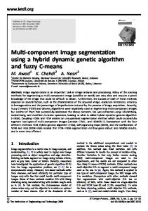 Multi-component image segmentation using a hybrid ... - IEEE Xplore
