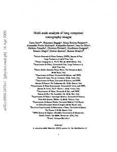 Multi-scale analysis of lung computed tomography images