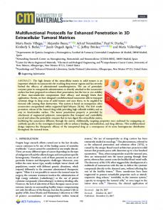 Multifunctional Protocells for Enhanced ... - ACS Publications