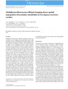 Multiphoton fluorescence lifetime imaging ... - Wiley Online Library