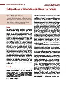 Multiple effects of benzamide antibiotics on FtsZ ... - Wiley Online Library