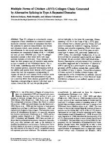 Multiple Forms of Chicken a3(VI) Collagen Chain ... - BioMedSearch