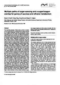 Multiple paths of sugar-sensing and a sugar/oxygen overlap for genes ...