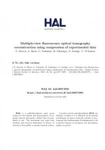 Multiple-view fluorescence optical tomography reconstruction ... - Hal