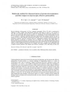 Multiscale method for characterization of porous microstructures and ...