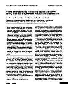 Murine cytomegalovirus induces expression and enzyme ... - CiteSeerX