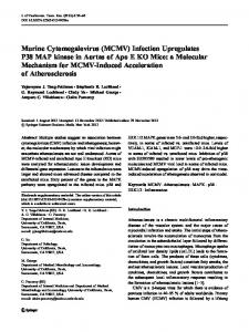 Murine Cytomegalovirus (MCMV) Infection Upregulates P38 MAP ...