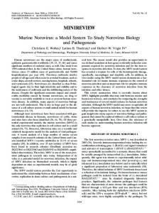 Murine Norovirus: a Model System To Study Norovirus Biology and ...