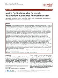 MurineFig4is dispensable for muscle development but required for ...