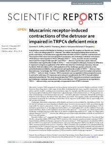 Muscarinic receptor-induced contractions of the ...