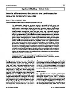 Muscle afferent contributions to the cardiovascular response to ...
