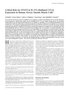 Muscle Cells Smooth CCL11 Expression in Human Airway Critical ...
