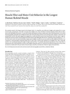 Muscle Fiber and Motor Unit Behavior in the ... - Semantic Scholar