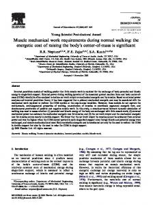 Muscle mechanical work requirements during normal walking: the ...