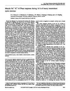Muscle Na -K - American Journal of Physiology - Endocrinology and ...
