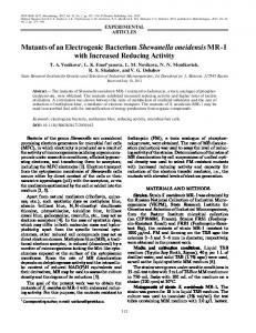 Mutants of an Electrogenic Bacterium Shewanella oneidensis MR 1