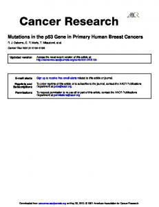 Mutations in the p53 Gene in Primary Human Breast ...