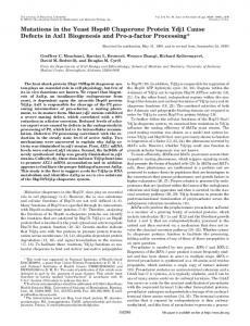 Mutations in the Yeast Hsp40 Chaperone Protein Ydj1 Cause Defects ...