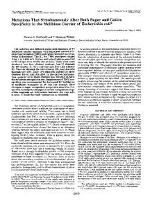 Mutations That Simultaneously Alter Both Sugar and Cation Specificity ...