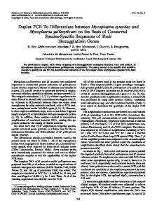 Mycoplasma synoviae - Journal of Clinical Microbiology - American ...
