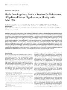 Myelin Gene Regulatory Factor Is Required for ... - Semantic Scholar