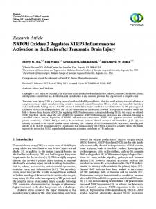 NADPH Oxidase 2 Regulates NLRP3 Inflammasome Activation in the
