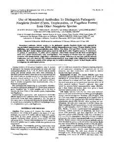 Naegleria fowleri - Journal of Clinical Microbiology - American Society ...