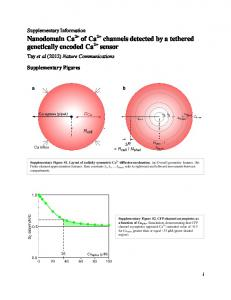 Nanodomain Ca of Ca channels detected by a tethered ... - Nature