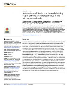 Nanoscale modifications in the early heating stages of bone ... - PLOS