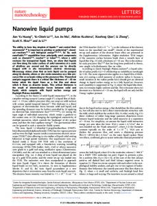 Nanowire liquid pumps - MIT