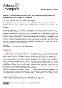 Native-valve endocarditis caused by Achromobacter ...