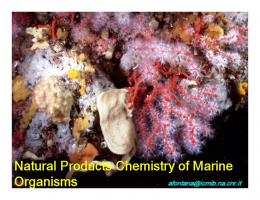 Natural Products Chemistry of Marine Organisms - MarBEF