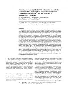 Neisseria gonorrhoeae Epithelial Cell Interaction Leads to ... - CiteSeerX