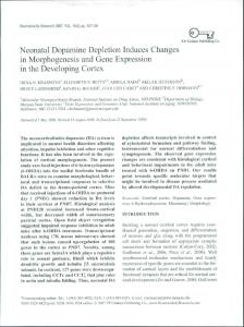 Neonatal Dopamine Depletion Induces Changes in ...