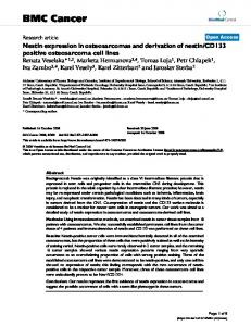 Nestin expression in osteosarcomas and derivation of nestin/CD133 ...