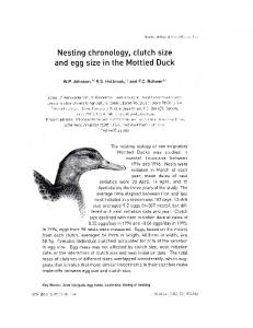 Nesting chronology, clutch size and egg size in the Mottled Duck
