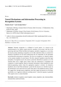 Neural Mechanisms and Information Processing in - Semantic Scholar