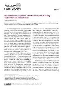 Neuroendocrine neoplasms: a brief overview ... - Revistas USP