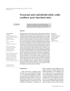 Neuronal and endothelial nitric oxide synthase gene ... - Scielo.br