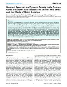 Neuronal Apoptosis and Synaptic Density in the ... - Semantic Scholar