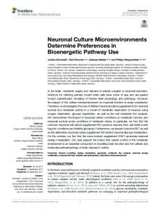 Neuronal Culture Microenvironments Determine ... - Frontiers