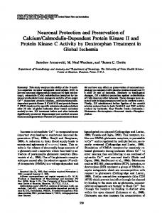 Neuronal Protection and Preservation of Calcium ... - SAGE Journals