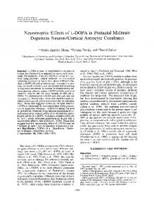 Neurotrophic Effects of l-DOPA in Postnatal ... - Wiley Online Library
