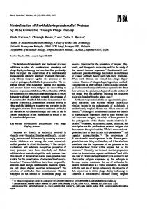 Neutralization of Burkholderia pseudomallei ... - Semantic Scholar