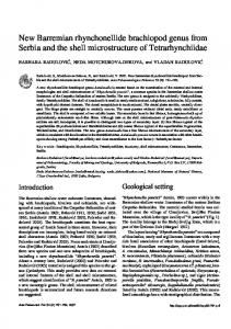 New Barremian rhynchonellide brachiopod from Serbia and the shell ...