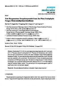 New Bergamotane Sesquiterpenoids from the
