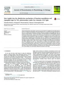 New insight into the disinfection mechanism of