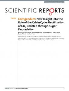 New Insight into the Role of the Calvin Cycle ... - Semantic Scholar