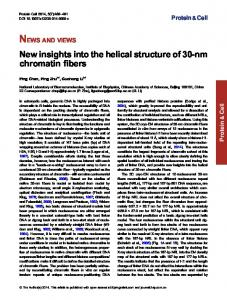 New insights into the helical structure of 30-nm chromatin fibers